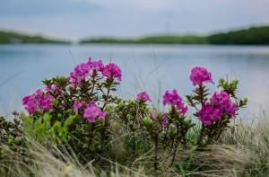 weekend-fotografie-sangeroz-bai-32